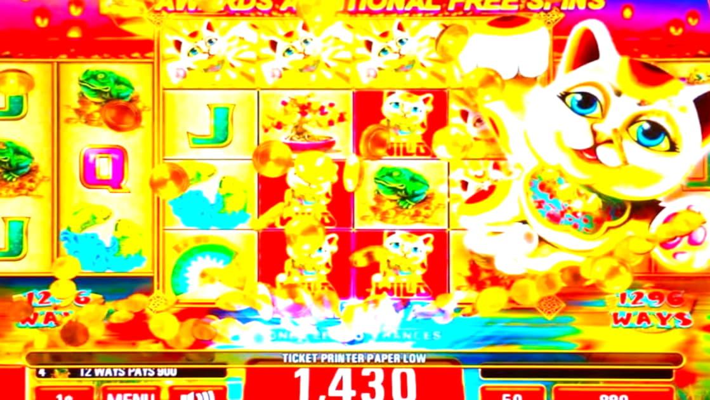 Eur 305 Free casino chip at Dafa Bet Casino